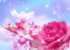 Цветение Rose и gladiolus Стоковые Фотографии RF