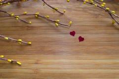 Цветения влюбленности Стоковая Фотография RF