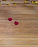 Цветения влюбленности Стоковое Фото