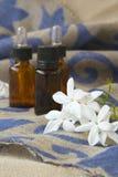 Цветения жасмина Стоковые Изображения RF