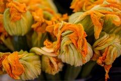 Цветения цукини Стоковые Фотографии RF