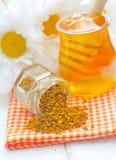 Цветень и мед Стоковая Фотография