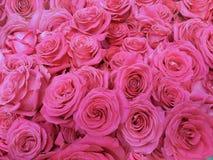 Цветеня в розовом розовом букете Стоковые Изображения