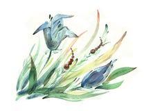 цветет акварель иллюстрация вектора