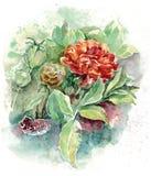 Цветет букет акварели Иллюстрация для карточки Стоковые Изображения