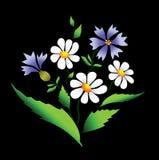 цветет вектор лета Стоковые Фотографии RF