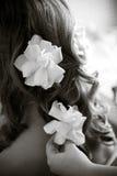 цветет волосы Стоковое Изображение RF