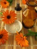 цветет гомеопатические пилюльки ноготк Стоковые Изображения RF