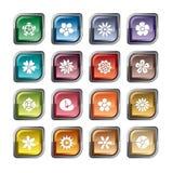 цветет иконы Стоковые Фото
