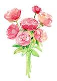 Цветет иллюстрация акварели Стоковая Фотография