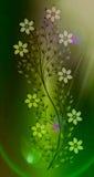 Цветет иллюстрация на красочной предпосылке Стоковая Фотография RF