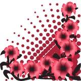Цветет иллюстрация Стоковая Фотография