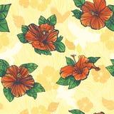 цветет картина hibiscus безшовная Стоковые Фотографии RF