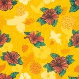 цветет картина hibiscus безшовная Стоковая Фотография