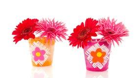 цветет красный цвет gerber розовый Стоковые Изображения