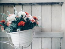 Цветет красочное стоковые изображения rf