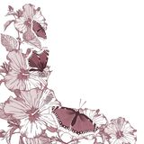 цветет лето различное Стоковое фото RF