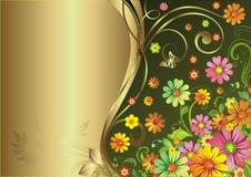 цветет лето Стоковое фото RF
