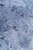 цветет льдед заморозка Стоковые Фото