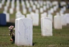 цветет надгробная плита Стоковое Фото