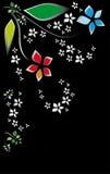 цветет ноча Стоковое Изображение RF
