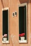 цветет окна Стоковые Фотографии RF
