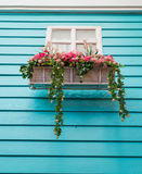 цветет окно Стоковое Фото