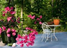цветет патио Стоковое фото RF
