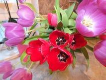 цветет пестротканый комплект стоковое фото rf