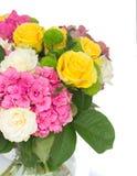 цветет пинк hortensia Стоковое фото RF