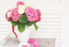 цветет пинк hortensia Стоковое Изображение RF