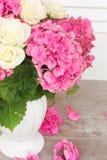 цветет пинк hortensia Стоковые Фотографии RF