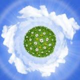 цветет планета природы зеленого цвета травы Стоковое Фото