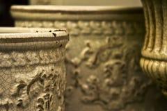 цветет плантаторы Стоковая Фотография RF