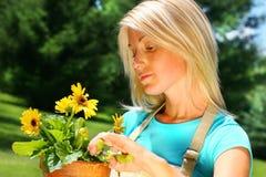 цветет подрежа женщина стоковые изображения rf