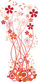 цветет помеец Стоковые Изображения RF