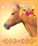 цветет портрет лошади иллюстрация вектора