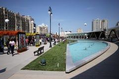 Цветет праздник в парке бульвара зимы в городе Баку Стоковая Фотография