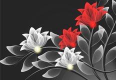 цветет прозрачное Стоковые Фото