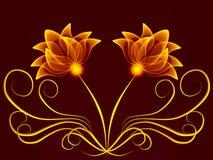 цветет прозрачное Стоковые Изображения RF