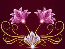 цветет прозрачное Стоковая Фотография RF
