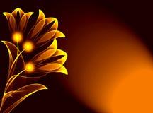 цветет прозрачное Стоковые Фотографии RF