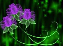 цветет прозрачное Стоковое Изображение