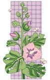 цветет просвирник Стоковые Фотографии RF