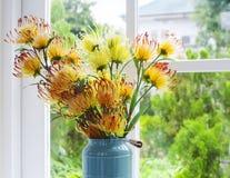 Цветет пластмасса Стоковое Фото