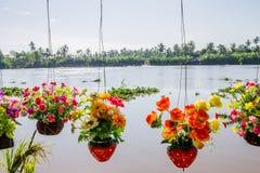 цветет пластмасса Стоковые Изображения RF