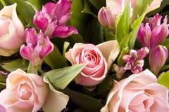 цветет романтичное стоковое фото