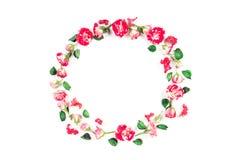 Цветет состав Венок сделанный из свежих роз и высушенных цветков на белой предпосылке Плоское положение, взгляд сверху Стоковые Фото
