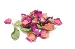 Цветет состав высушенных розовых цветков Валентайн дня s Drie Стоковое Изображение RF