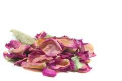 Цветет состав высушенных розовых цветков Валентайн дня s Drie Стоковые Изображения